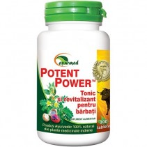 Potent Power x 100 tablete...