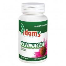 Echinacea 400 mg x 90...
