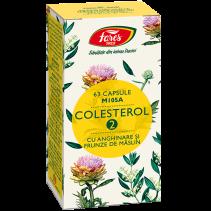 Colesterol 2 cu anghinare...