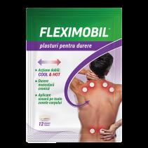 Fleximobil Plasturi pentru...