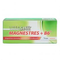 MagneStress + B6 x 40...