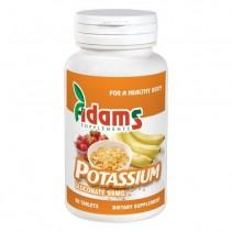 POTASSIUM 99 mg x 90...