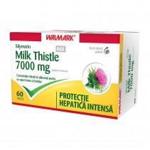 Silymarin Milk Thistle Max...