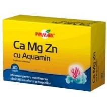 Ca Mg Zn cu Aquamin x 30...