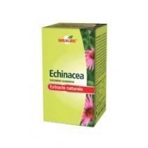 Echinacea x 60 tablete Walmark