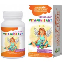 Ingerasul Vitaminizant -...